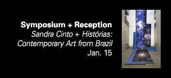 January 15 Symposium - Sandra Cinto + Histórias: Contemporary Art from Brazil
